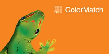 colormatch.jpg